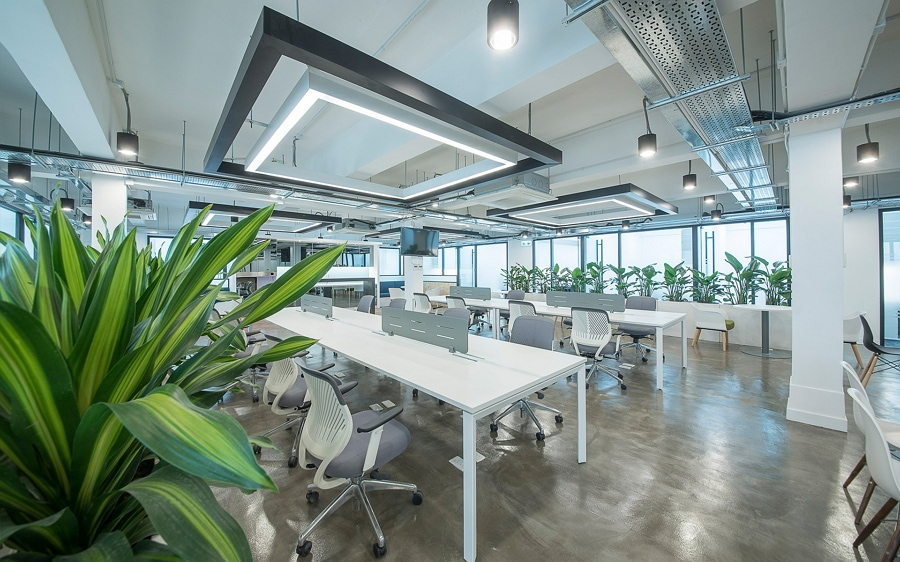 Office spaces: adaptability and optimization